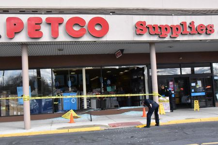 Cleanup at Petco in Palmer